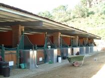 Boxes para caballos ECORAPID. Estructura metálica. Marbella (Málaga). 541 m2