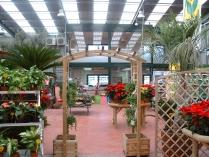 Nave garden. Jardinería ECORAPID en Tárrega (Lérida). 720 m2