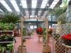 Vivai - Gardens